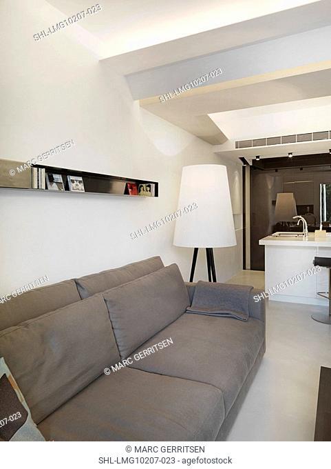Gray sofa in modern living room