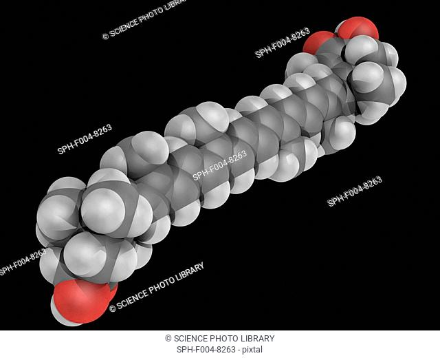 Astaxanthin, molecular model. Natural nutritional component, carotenoid not converted to vitamin A in the human body. Atoms are represented as spheres and are...