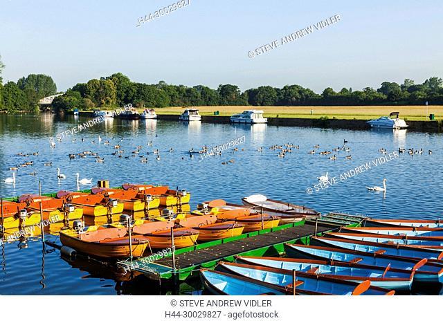 England, Berkshire, Windsor, Rowing Boats