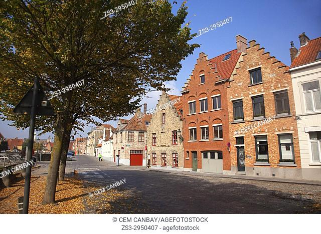 Autumn leaves and traditional houses in the city center, Bruges, West Flanders, Belgium, Europe