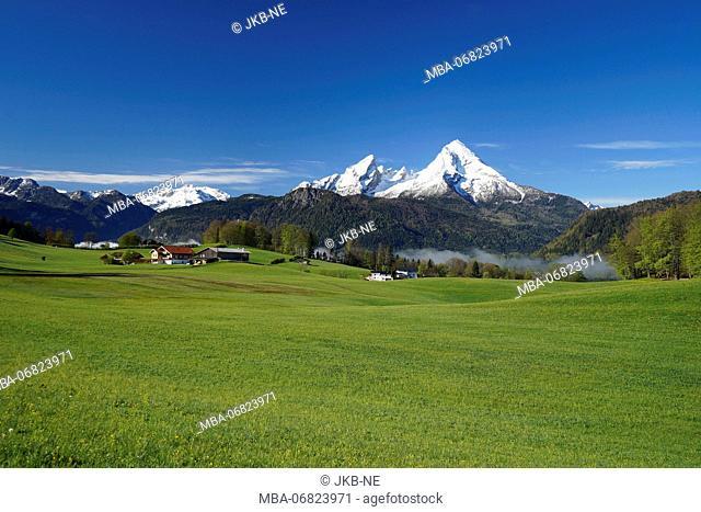 Germany, Bavaria, Upper Bavaria, Berchtesgadener Land, Bischofswiesen, Watzmann, mountain pasture