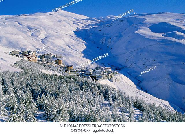 Snowy January landscape in Solynieve skiing resort by Pico Veleta, Sierra Nevada: the central run is illuminated only in Saturday evenings