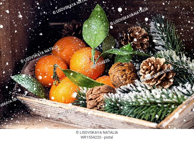 Mandarins with leaves and Fir branch on wooden background