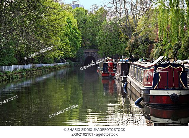 A row of narrowboats in a verdant stretch of a canal