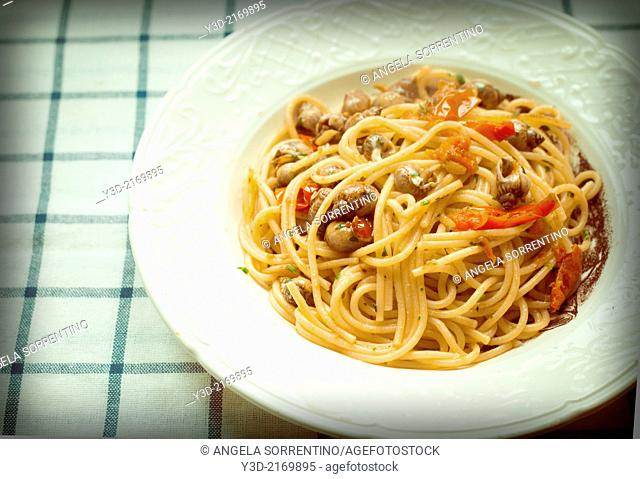 Periwinkle cooked with spaghetti, Italian recipe