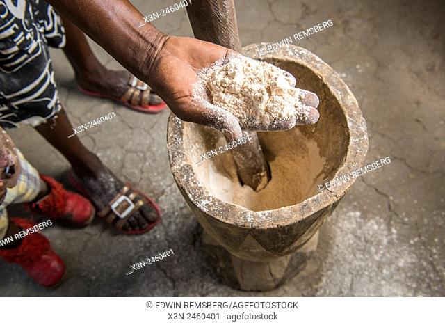 Maun, Botswana, Africa- Woman's hand showing sorghum meal after pounding with a mortar and pestle in Sexaxa Village