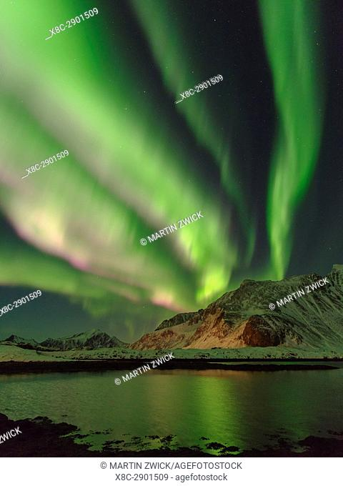 Northern Lights over Flakstadoya. The Lofoten Islands in northern Norway during winter. Europe, Scandinavia, Norway, February