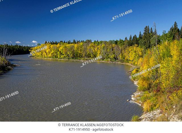 Fall foliage color along the Red Deer River in rural northern Manitoba, Canada