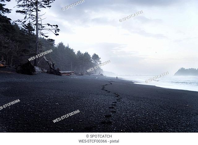 USA, Washington State, Olympic National Park, Seastack at Rialto beach