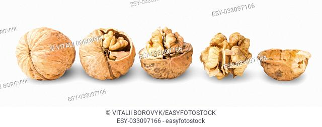 Several Nuts Lying In A Row Isolated On White Background