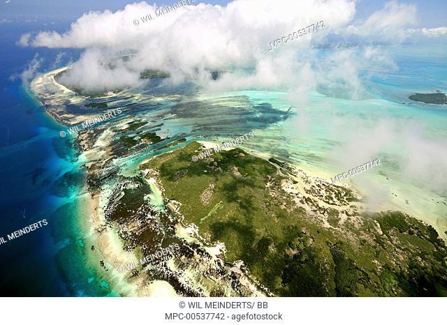 Coral reef and mangrove islands, Aldabra, Seychelles