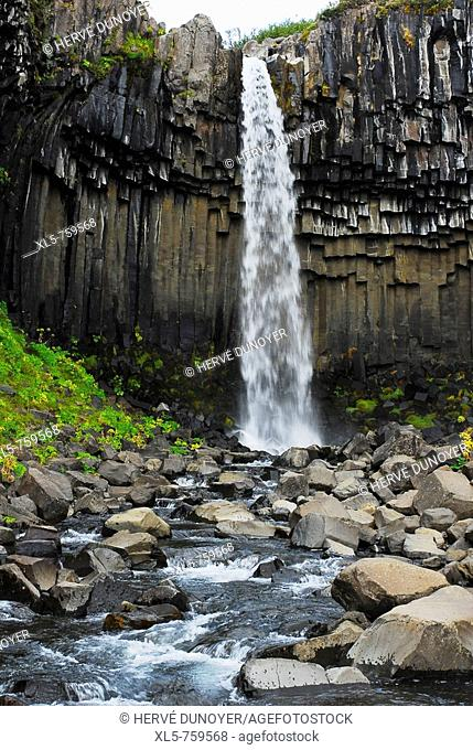 The famous waterfall Svartifoss in the nature reserve Skaftafell with his basaltic column, Iceland