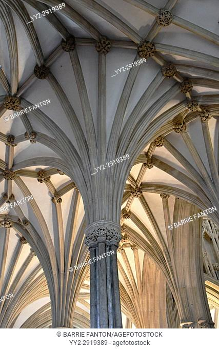 Fan Vaulted Ceiling, Chapter House, Cathedral Church of Saint Andrew, Wells Cathedral, Wells, England