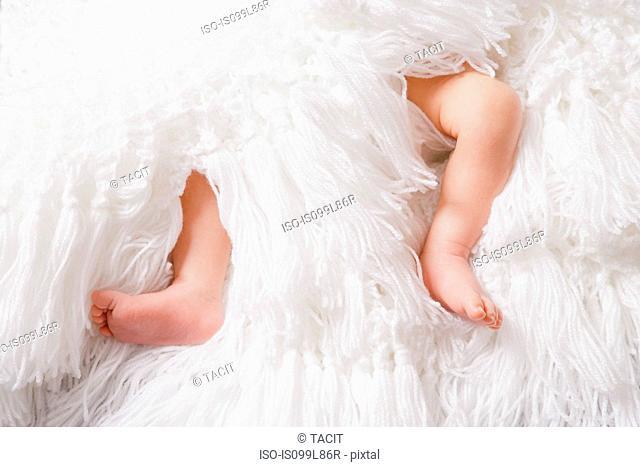 Baby boy's legs on white blanket