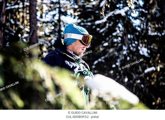 Portrait of skier beside trees, looking at view