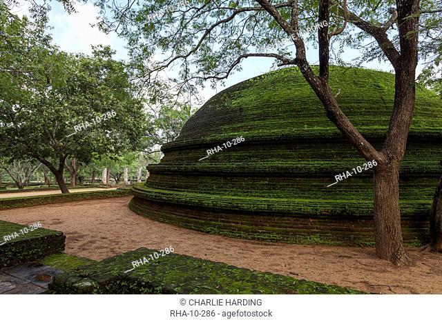 A dome shaped structure in the Kiri Vihara Buddhist temple ruins, Polonnaruwa, UNESCO World Heritage Site, Sri Lanka, Asia