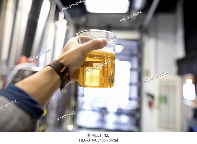 Personal perspective close up male brewer examining beaker of beer in brewery