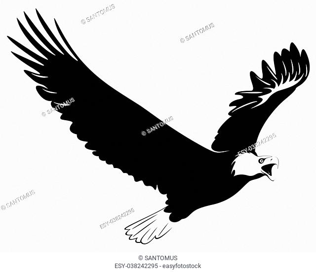 Illustration of an eagle flying on white background