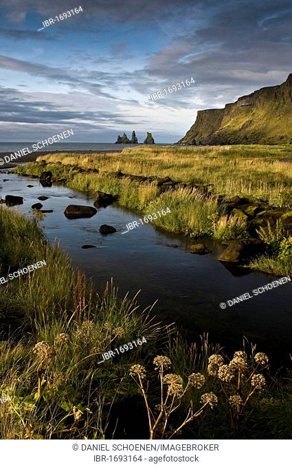 Beach near Vik, southwest coast, Iceland, Scandinavia, Europe
