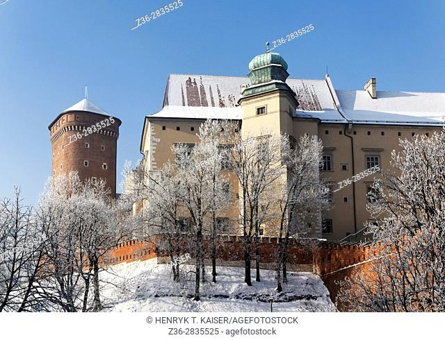 Poland, Krakow, Royal Castle at Wawel Hill