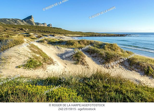 Buffels Bay. Cape Point Nature Reserve. Table Mountain National Park. Cape Town. Western Cape. South Africa