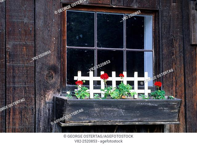 Mill window with flowers, Butte Creek Mill, Eagle Point, Oregon
