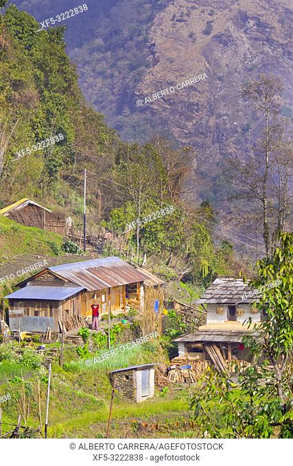 Small Village, Trek to Annapurna Base Camp, Annapurna Conservation Area, Himalaya, Nepal, Asia