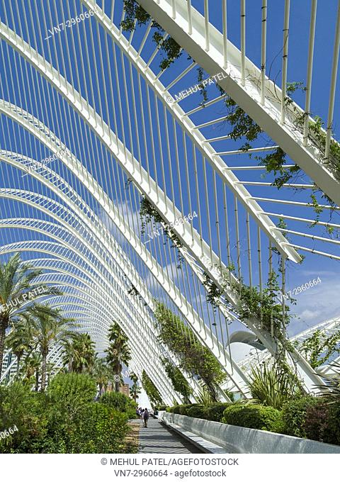 The Umbracle, open-air mediterraneian garden part of the City of Arts and Sciences complex, Valencia, Spain, Europe