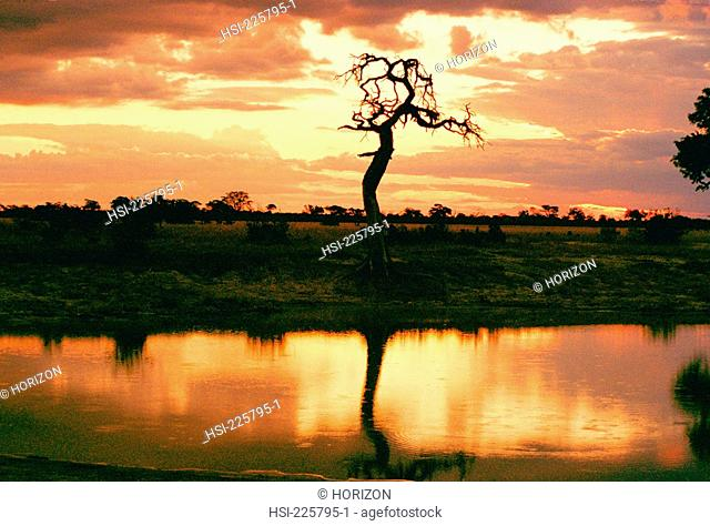 Travel, Botswana, Okavango Delta, Sunset
