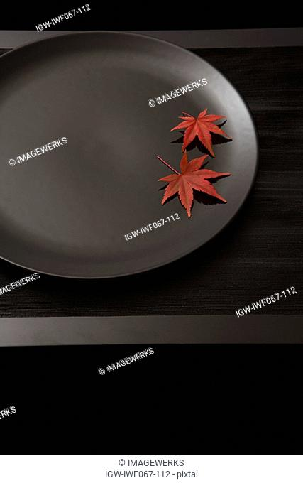 Maple leaf on plate against black background, close-up