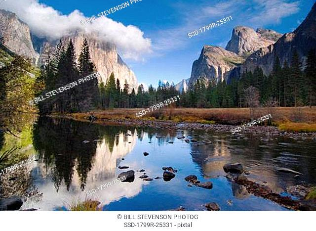 Reflection of mountains and trees in a river, El Capitan, Merced River, Yosemite National Park, California, USA