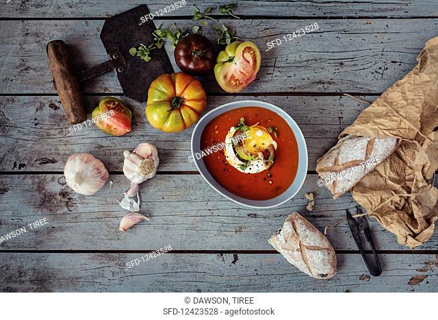 Tomato soup with heritage heirloom tomatoes, cream, baby basil, cracked black pepper and garlic and rustic bread