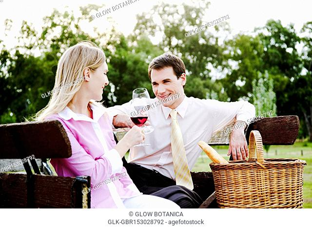 Couple drinking wine at picnic