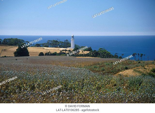 Coast. Lighthouse,tall tower. Fields,crops. Headland