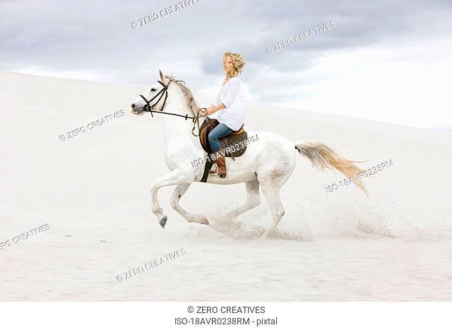 Horseriding on the beach