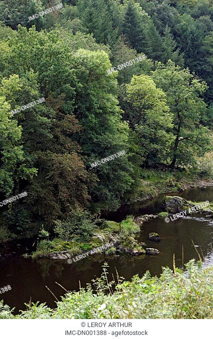 France, Auvergne, Lignerolles, gorges of the Cher