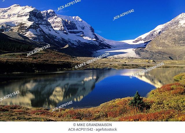 Athabasca Glacier scenic, Jasper National Park, Alberta, Canada