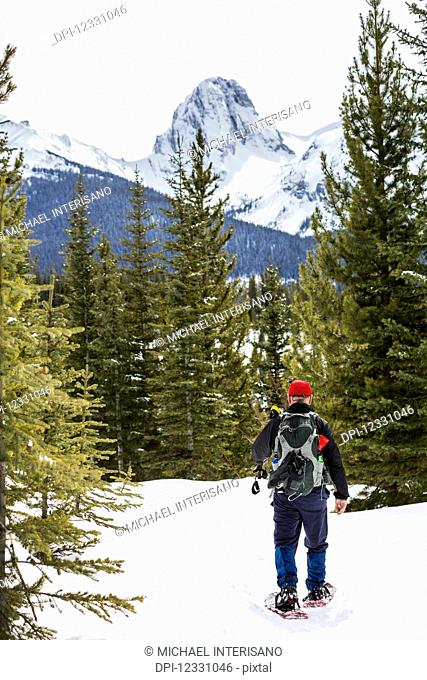 Male Snowshoer On Snow Covered Trail With Snow-Covered Mountain In The Background; Alberta, Canada