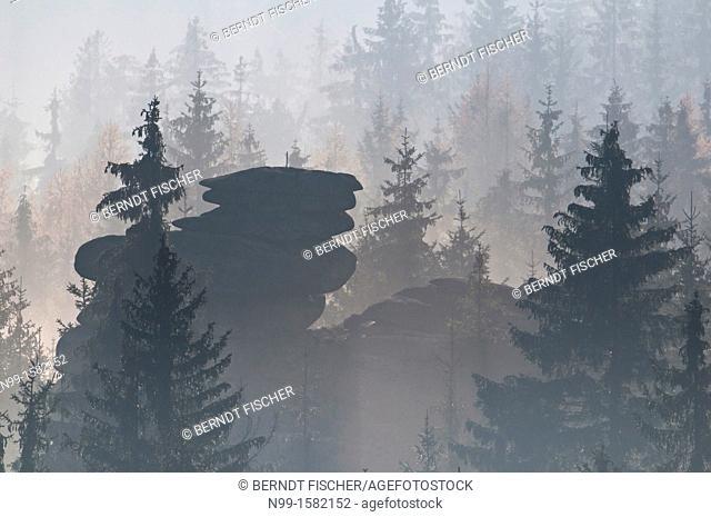 Granite rocks and spruce forest in fog, late autumn, Fichtelgebirge, Bavaria, Germany