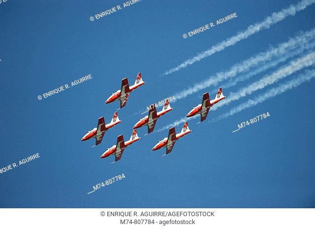 The Snowbirds Demonstration Team Canadian Air Force 431 Squadron flying in formation