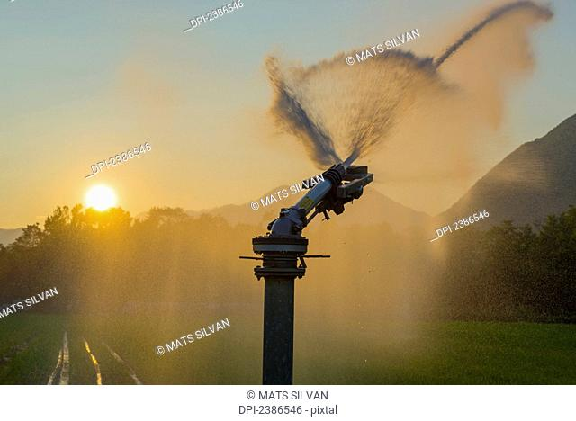 Watering the lawn at sunset; Locarno, Ticino, Switzerland