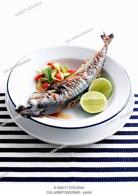 Plate of grilled fish with salad