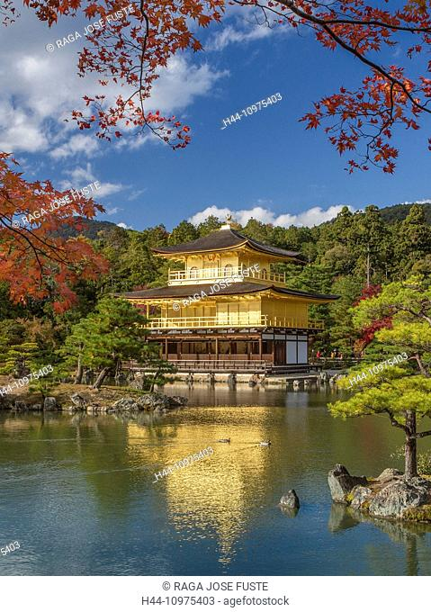 world heritage, Japan, Asia, Kansai, Kinkaku-Ji, Kyoto, Landscape, Temple, architecture, colourful, fall, famous, gold, golden, momiji, no people, pond