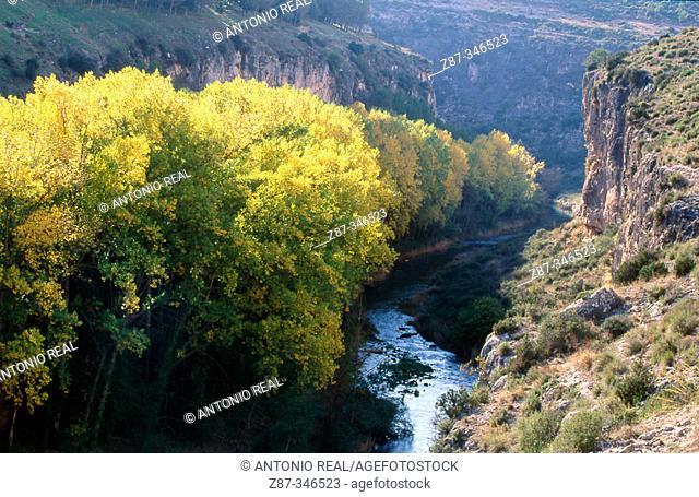 Hoces de Alarcón (river gorges) and Júcar river. Cuenca province, Spain