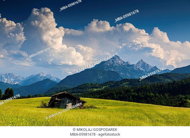 Germany, Bavaria, Alps, Mountains, Buckelwiesen, Mittenwald, Alpenwelt Karwendel