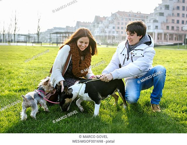 Young couple with their dogs on a meadow