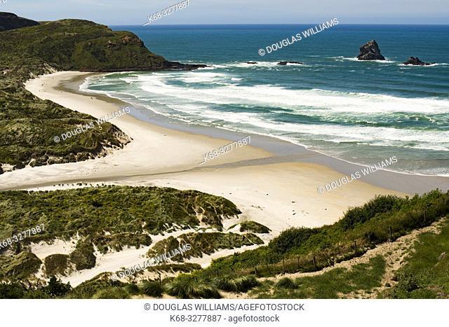 Beach on the Otago Peninsula, South Island, New Zealand