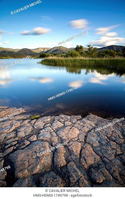 France, Var, Plaine des Maures National Nature Reserve, Le Cannet des Maures, Lac des Escarcets
