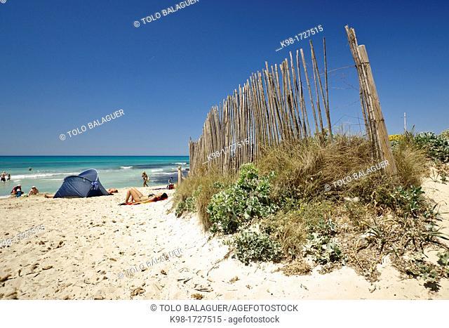 beach is Trenc, Ses Salines, Majorca, Balearic Islands, Spain
