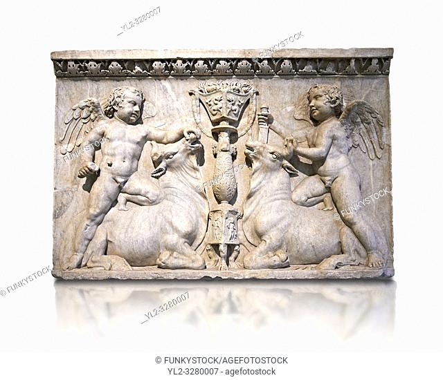 Roman marble sculptured relief with cupids about to sacrifice bulls, from the Temple of Venus Genetrix in the Forum of Caesar Rome 30 AD , inv 6718,